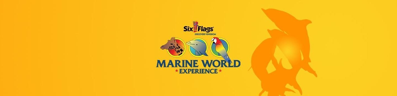 Marine World Experience